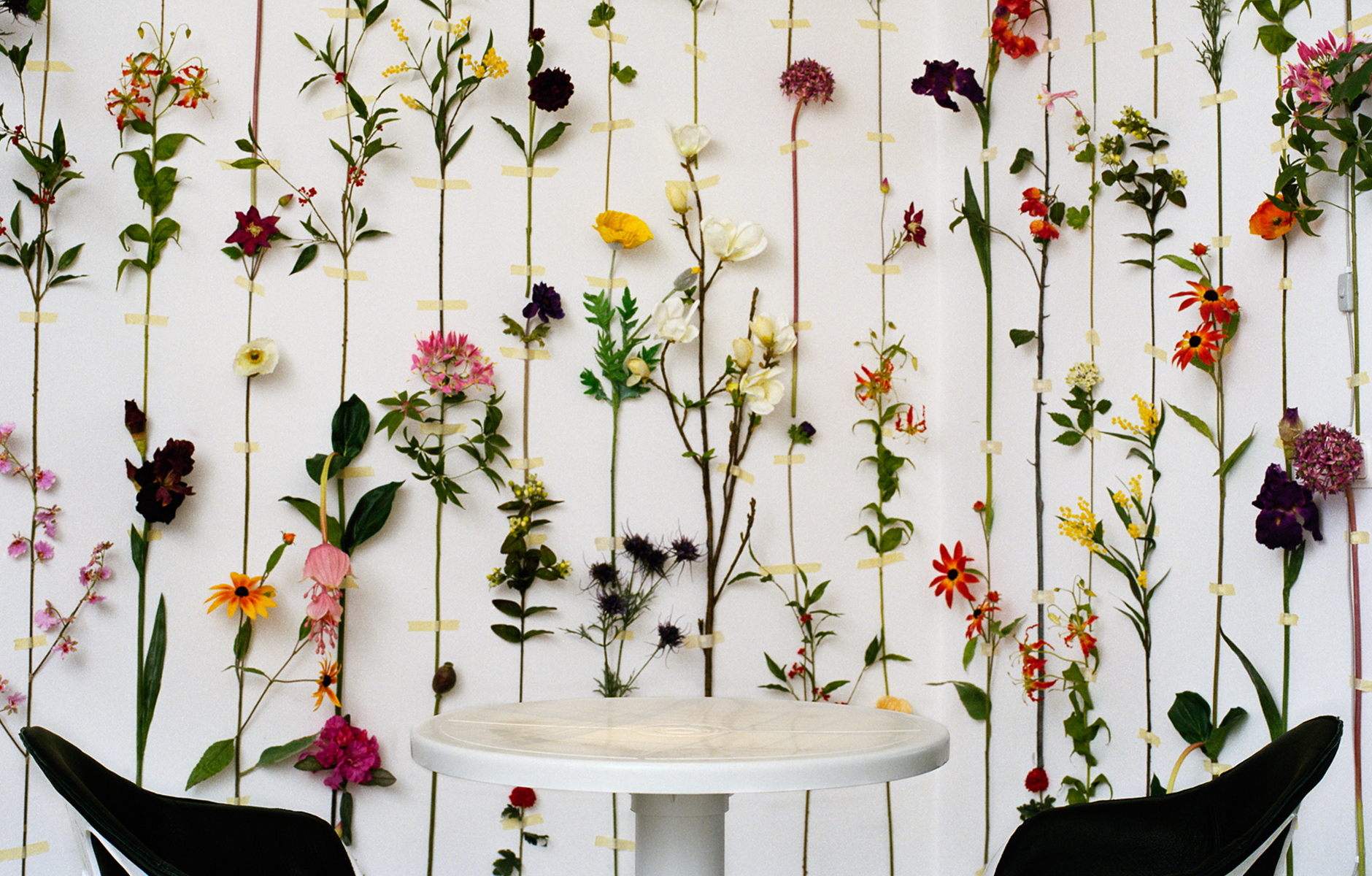 Sommerlich - Blütenpracht; echte Blüten als Wandbehang in Tensa Konsthall