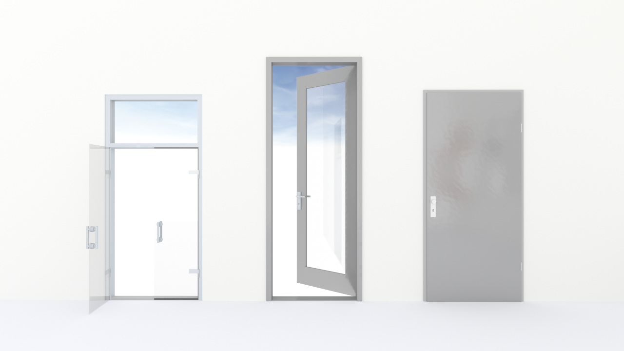 New Design Options for Doors