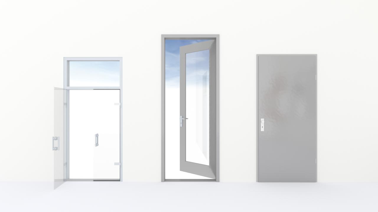 New Design Options for Doors