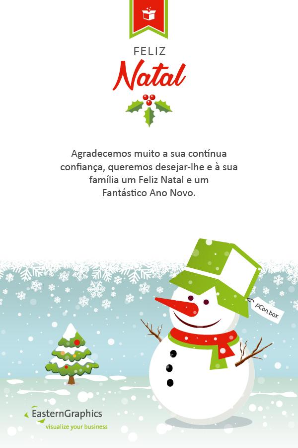 Feliz Natal e Fantástico Ano Novo!